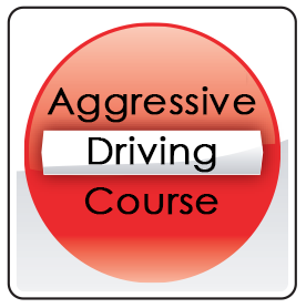 Aggressive Driving Course